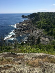 View south from Monhegan cliffs.