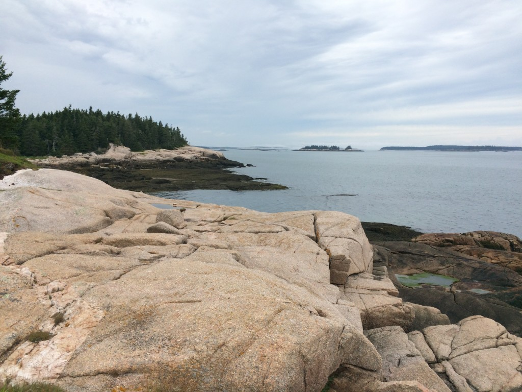 Rocky coastline along Great Wass Island Nature Conservancy trail.
