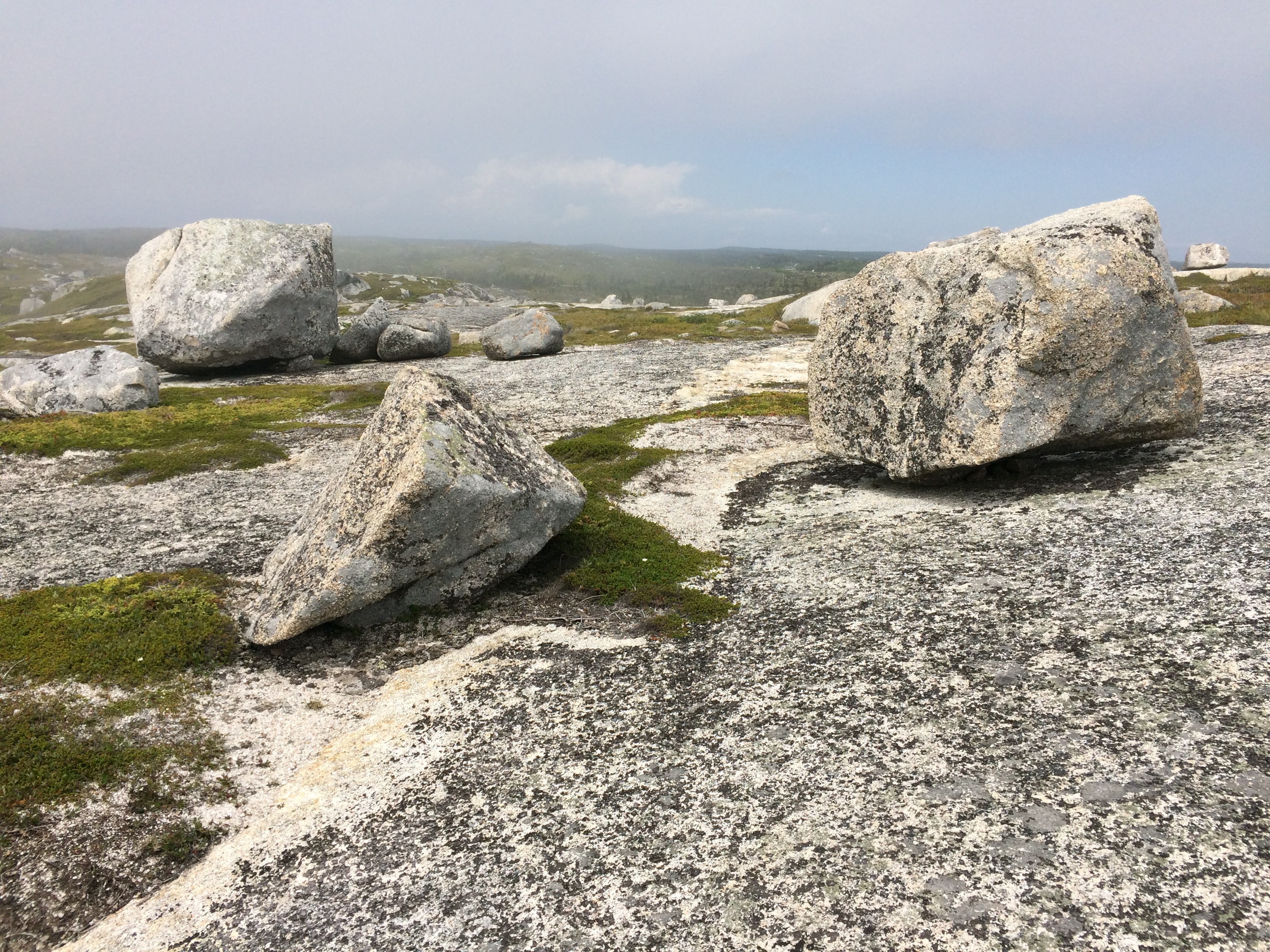 Boulders left behind by ancient glaciers at Peggy's Cove Preservation Area