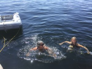 Swimming in the middle of Bras D'Or Lake