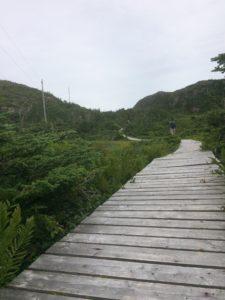 Ramea boardwalk