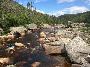 Grey River, Northwest Arm